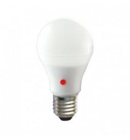 Vision-EL - LED 10 Watt...
