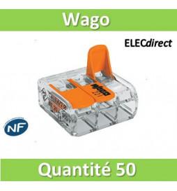 WAGO - Boîte de 50 Bornes...