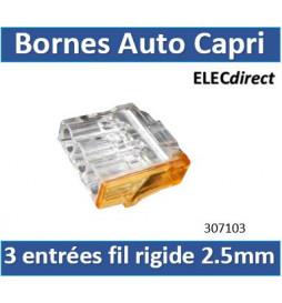 Capri - Bornes automatiques...